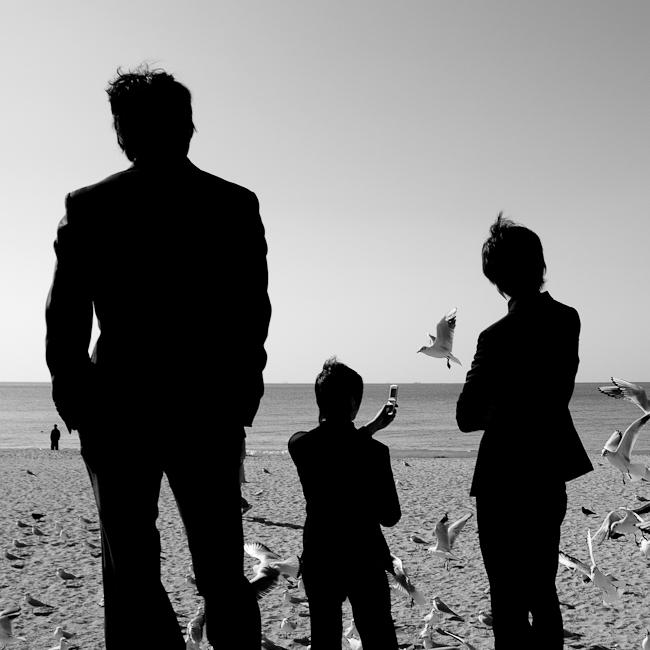 Men in black suit watching birds at the beach